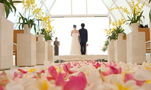 結婚相談所での結婚までの流れ